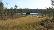 Wandeling-Pielpajärvi-wilderniskerk-8
