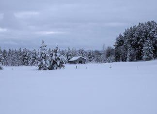 Finland landschap