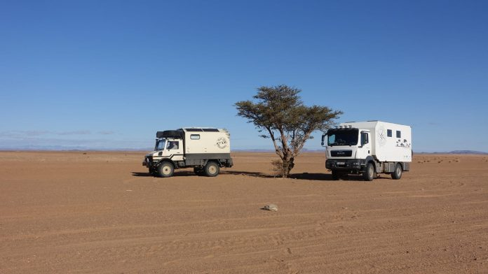 bakkie geparkeerd naast een boom in de woestijn