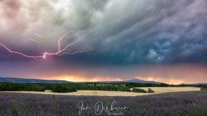 onweer boven lanvendelveld